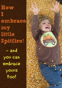 My Little Spitfire