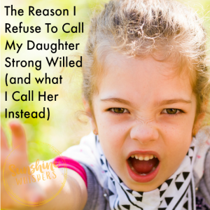 parenting the strong willed child