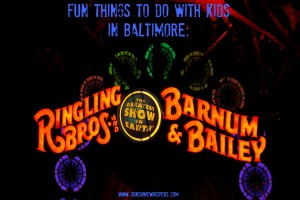 fun things to do with kids in Baltimore: the circus