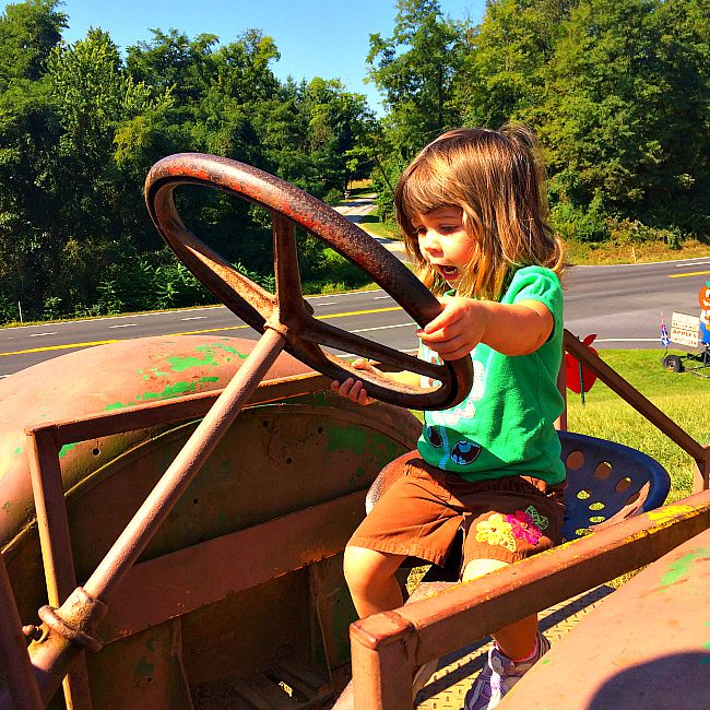 fun things to do with kids in maryland baughers