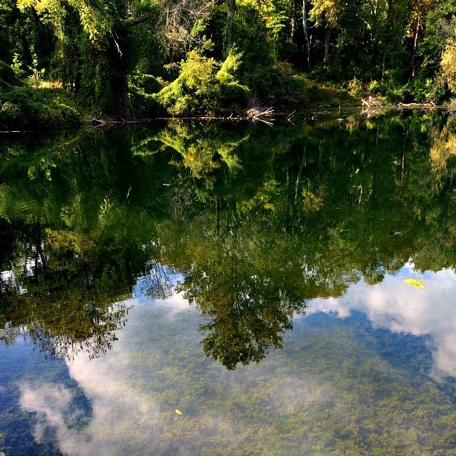 patapsco valley state park