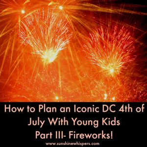 iconic dc 4th of july