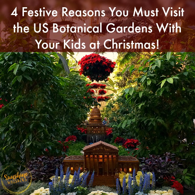 4 festive reasons you must visit the us botanic garden with kids at christmas for Botanical gardens dc christmas