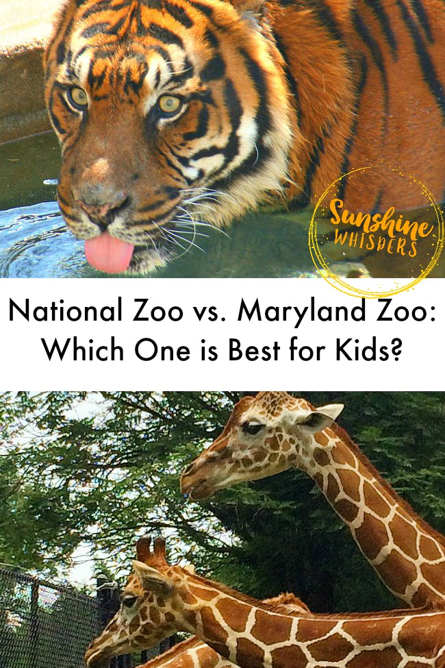 national zoo vs. baltimore zoo
