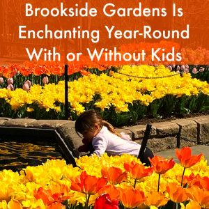 Brookside Gardens Is Enchanting Year Round With Or Without Kids