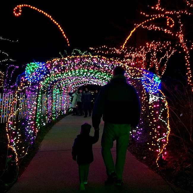 16 magical places to see christmas lights in the dc area - Christmas Lights In Dc